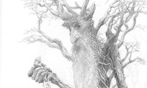 Mitologia e divinità gallesi